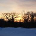Orange Dawn Sky Behind Trees by Kent Lorentzen