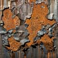 Orange Decay by Russ Dixon