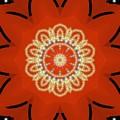 Orange Desert Flower Kaleidoscope by Roxy Riou