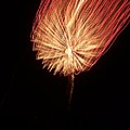 Orange Firework by Michelle Miron-Rebbe