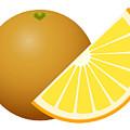 Orange Fruit by Miroslav Nemecek