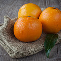 Orange Fruit by Sabino Parente