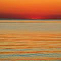 Orange Glow by Terrie Stickle