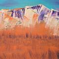 Orange Grass by Liz Vernand