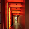 Orange Hallway by Lauri Novak