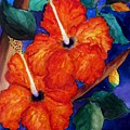 Orange Hibiscus by Lil Taylor