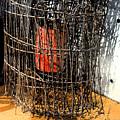 Orange In Wire by Gary Everson