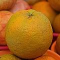 Orange by Michiale Schneider