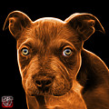 Orange Pitbull Puppy Pop Art - 7085 Bb by James Ahn
