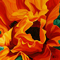 Orange Poppy by Julie Pflanzer