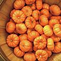 Orange Pumpkins Autumn Background. by Konstantin Sutyagin