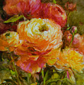 Orange Ranunculus by Tracie Thompson