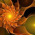 Orange Rose Blossom by Kim Sy Ok