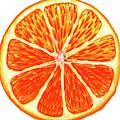 Orange Slice by Erin Sparler