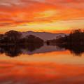 Orange Sunset by Daniele Fanni
