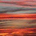 Orange Sunset by Sierra Vance