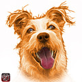 Orange Terrier Mix 2989 - Wb by James Ahn