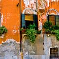 Orange Wall by Harry Spitz