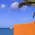 Orange Wall-st Lucia by Chester Williams