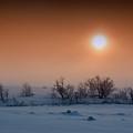 Warm Winter Sun Snow Duel by John Williams