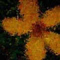 Orange-yellow Flower by April Patterson