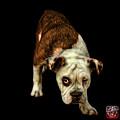 Orangeenglish Bulldog Dog Art - 1368 - Bb by James Ahn