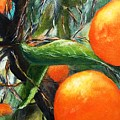 Oranges Extract by Anthony Camilleri