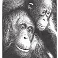 Orangutans by Yana Wolanski
