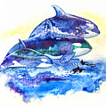 Orca Fantasy by Sherry Shipley