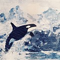 Orca Glacier by Traveling Earthlings