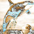 Orca Ps by Mayhem Mediums