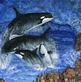Orcas Family Frolicks by Tanna Lee M Wells