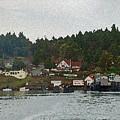 Orcas Island Dock by Carol  Eliassen