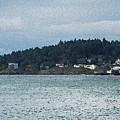 Orcas Island View  by Carol  Eliassen