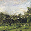 Orchard by Charles-Francois Daubigny