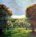 Orchard by Martha Dolan