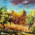 Orchard by Pol Ledent