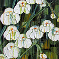 Orchid Dance by Diane Dean