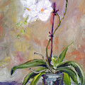 Orchid In White 3 by Frank Hoeffler