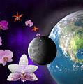 Orchid Moon Base by Gary Crockett