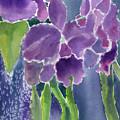 Orchid Rain by Marsha Elliott