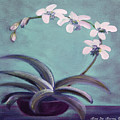 Orchids 5 by Gina De Gorna