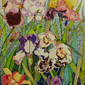 Orchids And Irises II  by Karen Merry