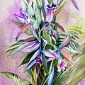 Orchids- Botanicals by Mindy Newman