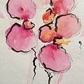 Orchids by Britta Zehm