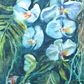 Orchids by Donna Pierce-Clark