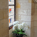 Orchids In The Chateau by Dave Mills
