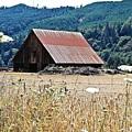 Oregon Barn by Wayne Marsh