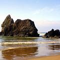 Oregon Coast 10 by Marty Koch