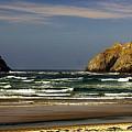 Oregon Coast 14 by Marty Koch